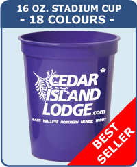 16 Oz Smooth Stadium Cup - 18 Colours